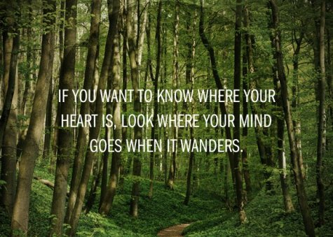 2012_10_if-you-want-to-know-where-your-heart-is-2c-look-where-your-mind-goes-when-it-wanders-417974-475-475